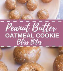 Peanut Butter Oatmeal Cookie Bliss Bites